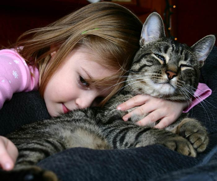 child hugging a cat