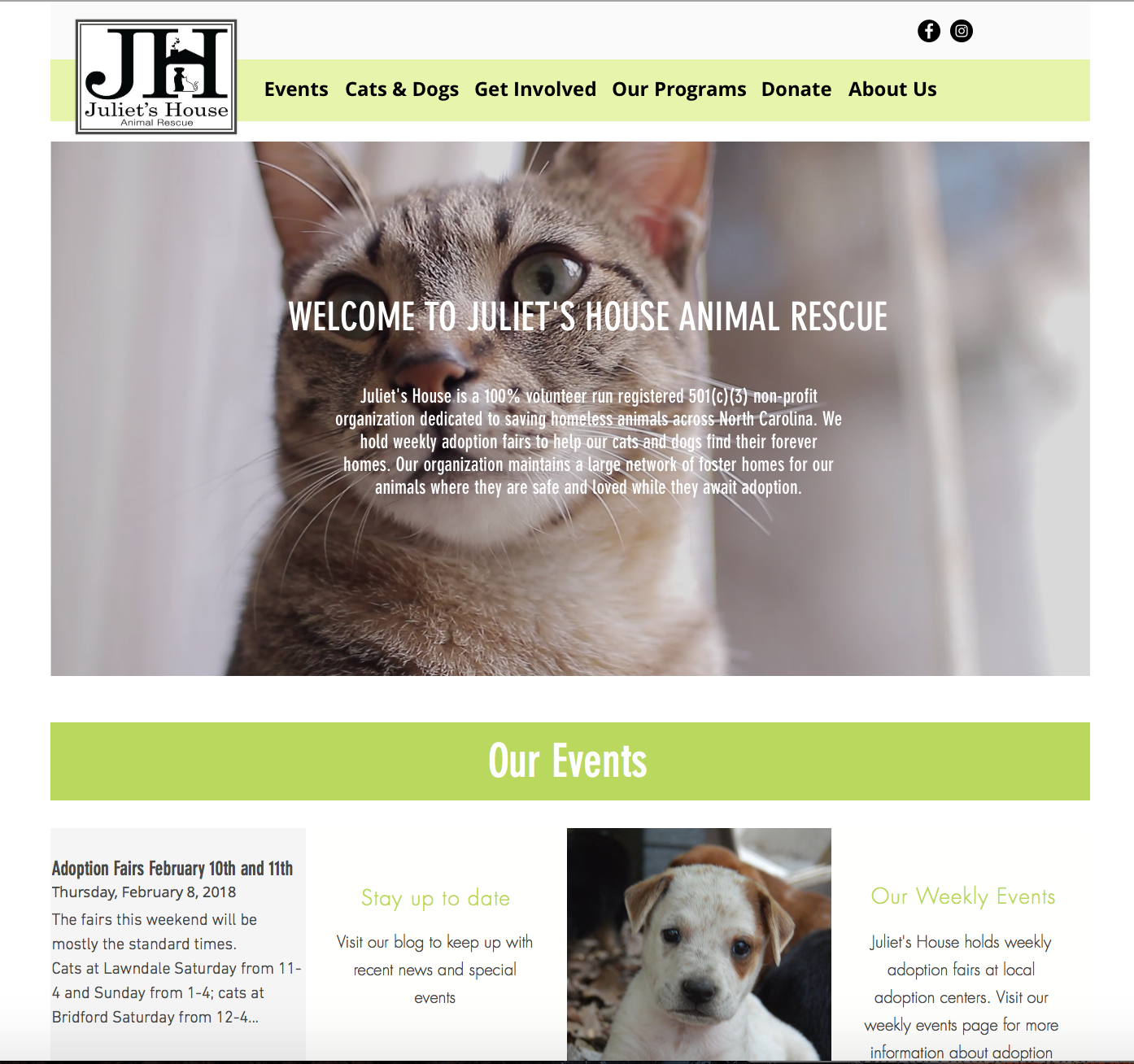 Animal Rescue and Care